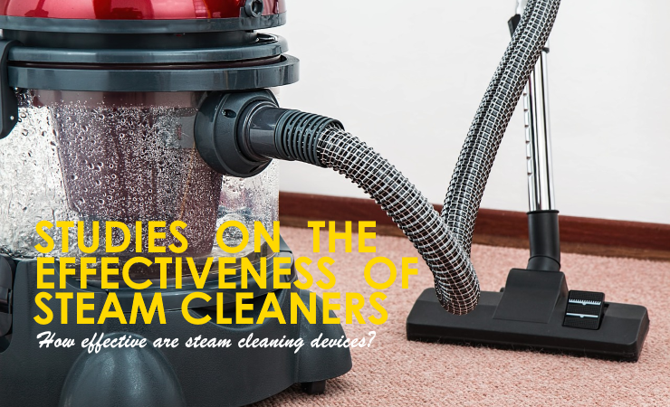 Effectiveness of Steam Cleaners