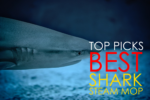 What is the Best Shark Steam Mop? Top Picks